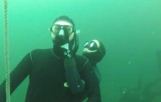 freediving in october - vobster9