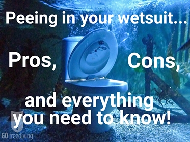go freediving - peeing in your wetsuit - title image