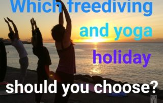 yoga and freediving holiday - featured image