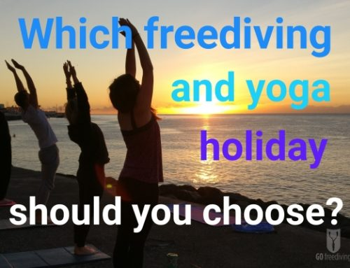 Which Type of Freediving and Yoga Holiday Should You Choose?