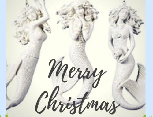Christmas Freediving Wishes, From Go Freediving!!!!!