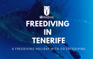 Freediving in Tenerife (1)