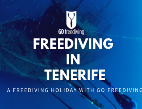 Freediving In Tenerife –  A Winter Freediving Training Holiday