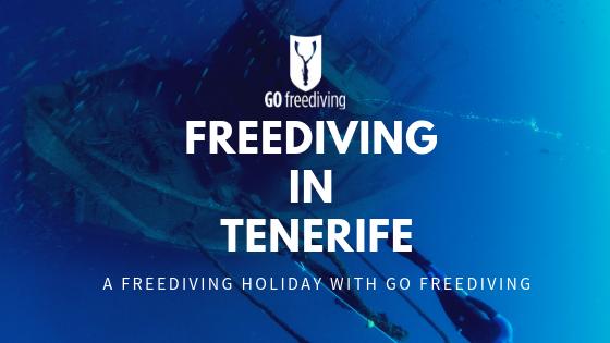 Freediving in Tenerife (1)