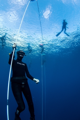 freediving in Tenerife photo credit pavol