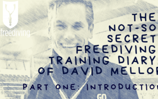 freediving training diary David Mellor part one