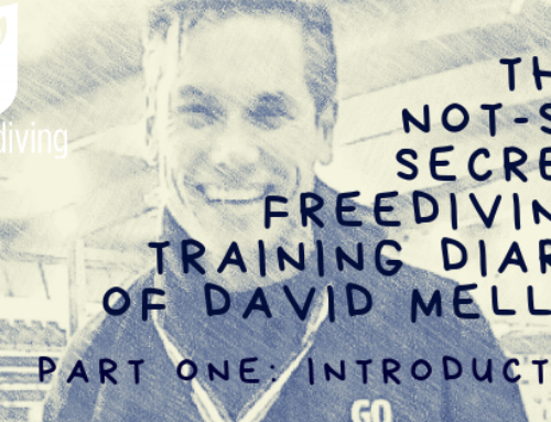 David Mellor – Freediving Training Diary – Introduction