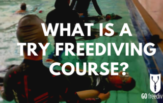 what is a try freediving course featured image1