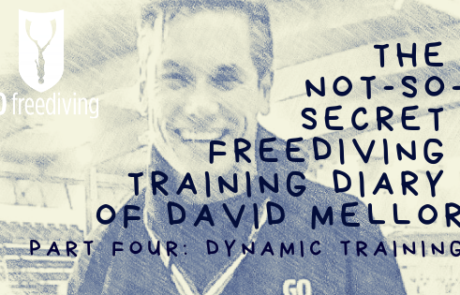David Mellor - Dynamic Training