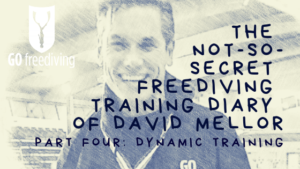 The Not-s0-secret Diary of David Mellor Dynamic Training