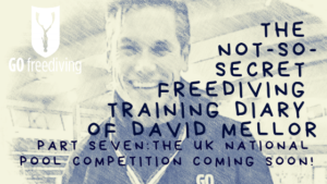 The Not-s0-secret Diary of David Mellor UK Nationals