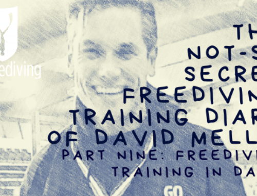 David Mellor – Freediving Training Diary – Freediving Training in Dahab