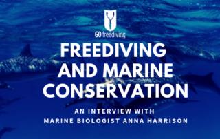 Marine Conservation 2
