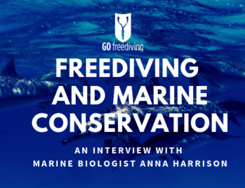 Marine Conservation And Freediving