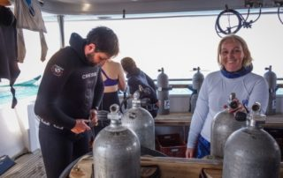 Red Sea Freediving Holiday - Pash