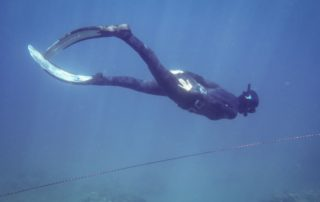 Red Sea Freediving Holiday - freediving13