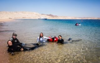 Red Sea Freediving Holiday - freediving14