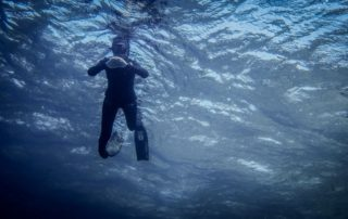 Red Sea Freediving Holiday - freediving4