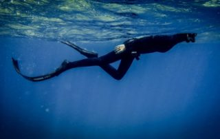 Red Sea Freediving Holiday - freediving6