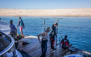 Red Sea Freediving Holiday - tracey