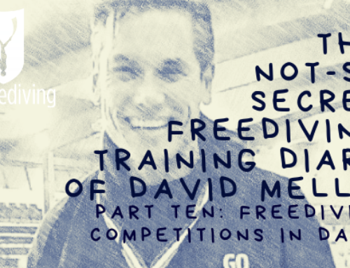 David Mellor – Freediving Training Diary – Freediving Competitions in Dahab