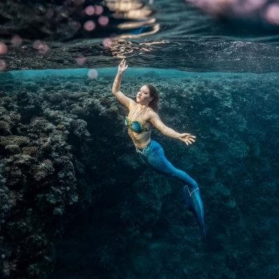 Mermaid Linda