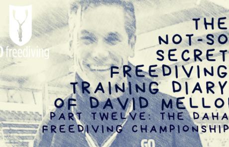 David Mellor Diary - Dahab Freediving Championships