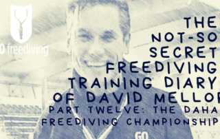 Welcome to the not-so-secret freediving training diary of David Mellor! In David's last diary entry David talked about his final preparations for the Dahab Freediving Championships, and how he needed to increase his protein intake, was trying not to over train and introduced us to his new stretching toy. This time we talk to him post competition and hear about the highs and lows of the event.