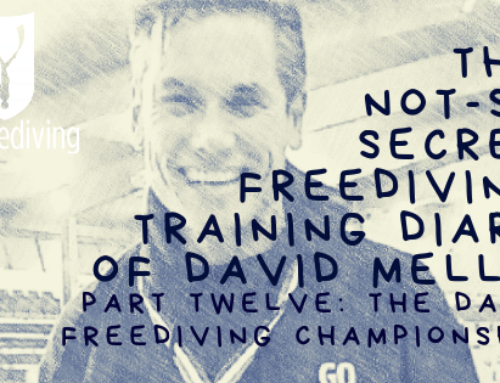 David Mellor – Freediving Training Diary – Dahab Freediving Championships