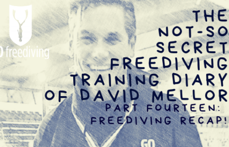 Not-s0-secret Diary of David Mellor freediving recap!
