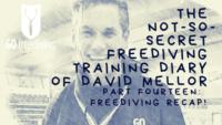 Not-s0-secret Diary of David Mellor freediving recap!