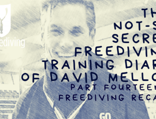 David Mellor Diary – Training and Competition Recap