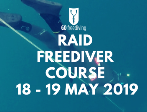 What Freediving Course Equipment Do You Use On A Freediving Course?