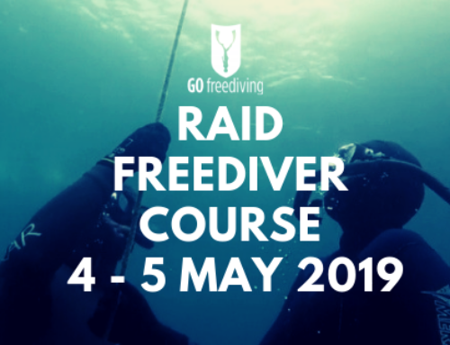 An Online Freediving Course Is Just The Start!