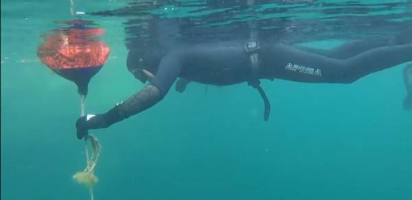 go freediving - freediving course equipment RAID May 2019 - image one