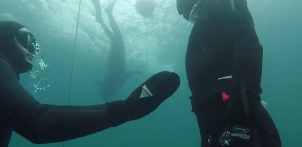 go freediving - freediving course equipment RAID May 2019 - image three