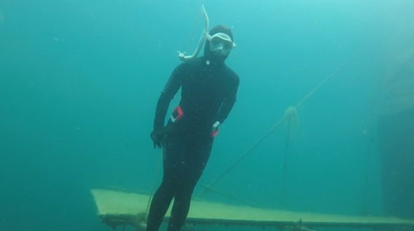 Go Freediving - learning to equalise on a freediving course - open water4