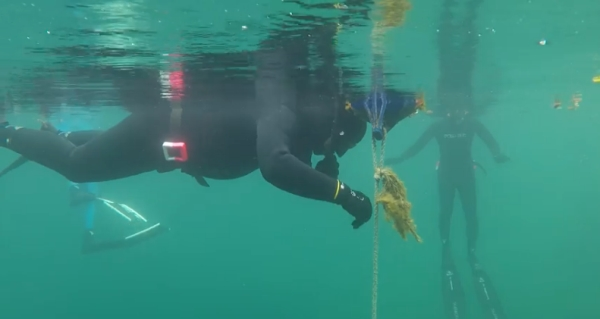 go freediving - freediving buddy -9