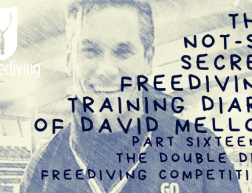 David Mellor Diary – Double Dip Freediving Competition