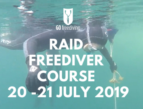 What Freediving Skills Do You Learn On A Freediving Course?