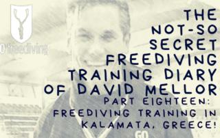 Not-s0-secret Diary of David Mellor 18