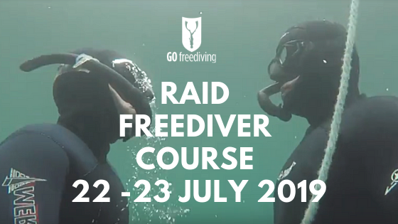 go freediving - small freediving classes - buddy