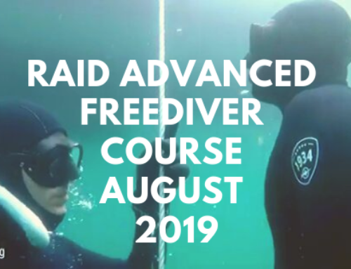 Advanced Courses in Freediving – The Next Step