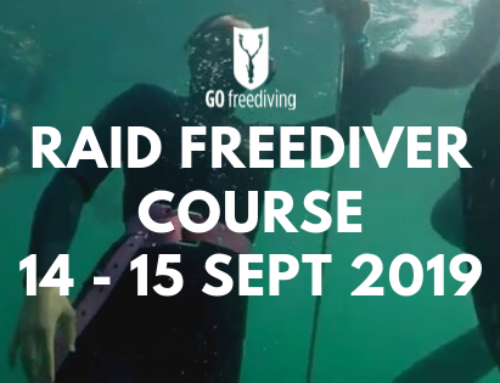 Learning Finning techniques on a Freediving Course