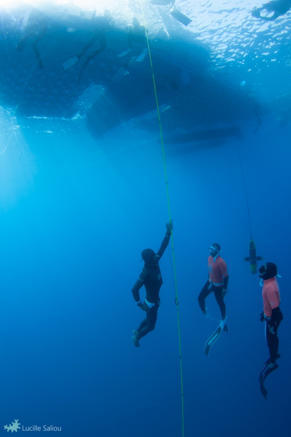 David Mellor - Aida world freediving championships - photo credit Lucille Saliou