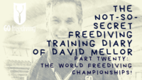 The world freediving championships