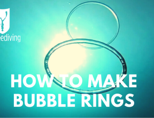 How To Make Vertical and Horizontal Bubble Rings