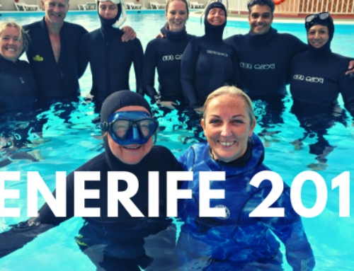 Freediving Camp Training in Tenerife