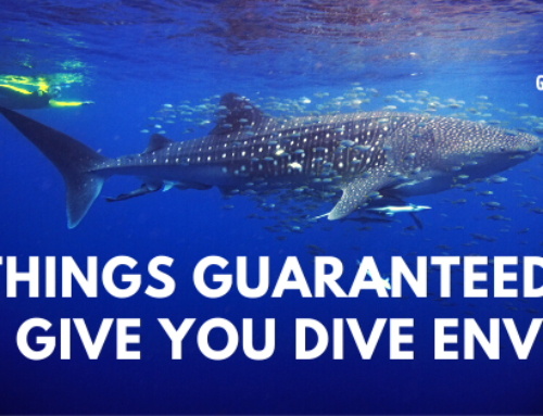 Five things guaranteed to give you dive envy