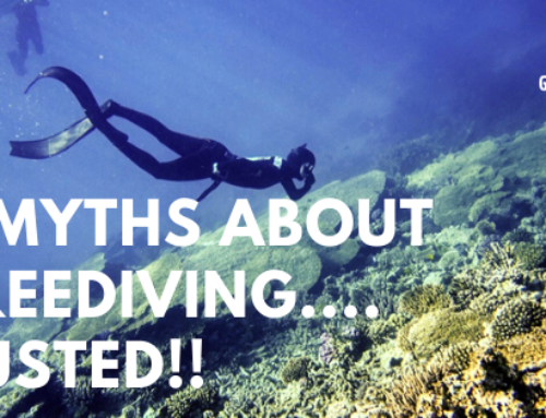 Five myths about freediving… BUSTED!